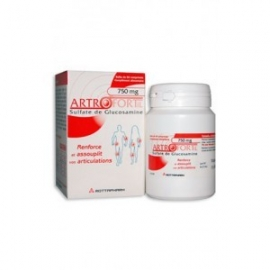 ArtroFortil Articulations 750 mg 60 comprimés