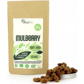 Valebio Super Fruit Mulberry Bio 120 g