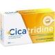 Cicatridine Acide Hyaluronique 10 Suppositoires